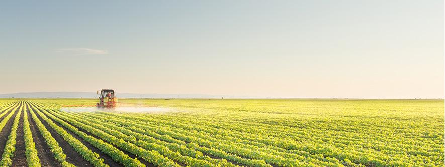 Intenzivna poljoprivreda