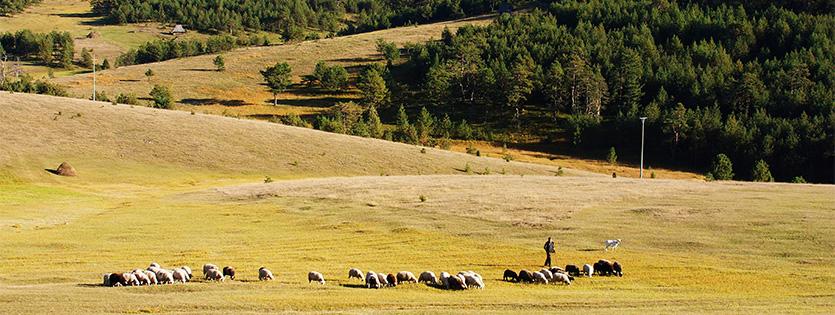 Priroda u službi poljoprivrede